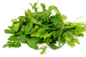 Bunch of a parsley